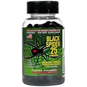 Black Spider (100 кап)