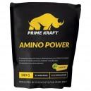 Amino Power (500 г)