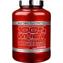Whey Protein Professional (2350 г)