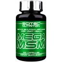Mega MSM (100 кап)